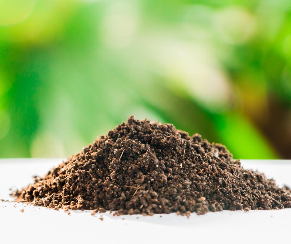 Fertilizzazione Biologica – Perchè Adottare La Concimazione Organica